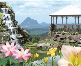 Maleny Botanic Gardens - Accommodation Adelaide