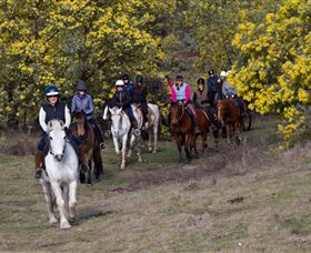 Burnelee Excursions on Horseback - Accommodation Adelaide