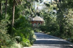 Royal Botanic Gardens Victoria - Accommodation Adelaide