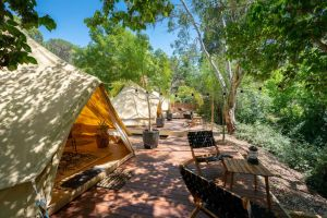 Castlemaine Gardens Luxury Glamping - Accommodation Adelaide